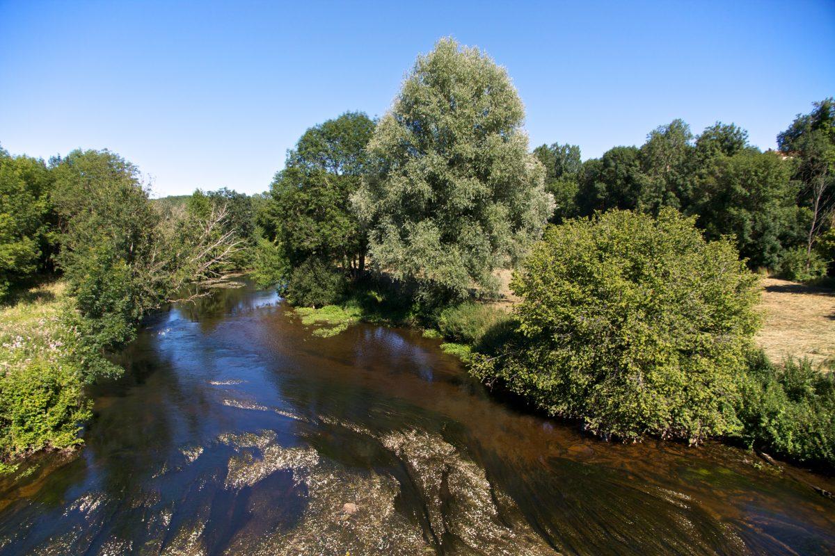 Pêche sur la Dronne en Dordogne