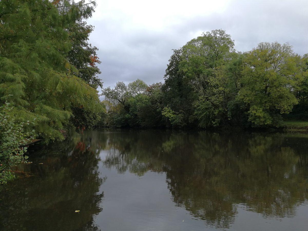 Pêche en Dordogne sur l'Isle