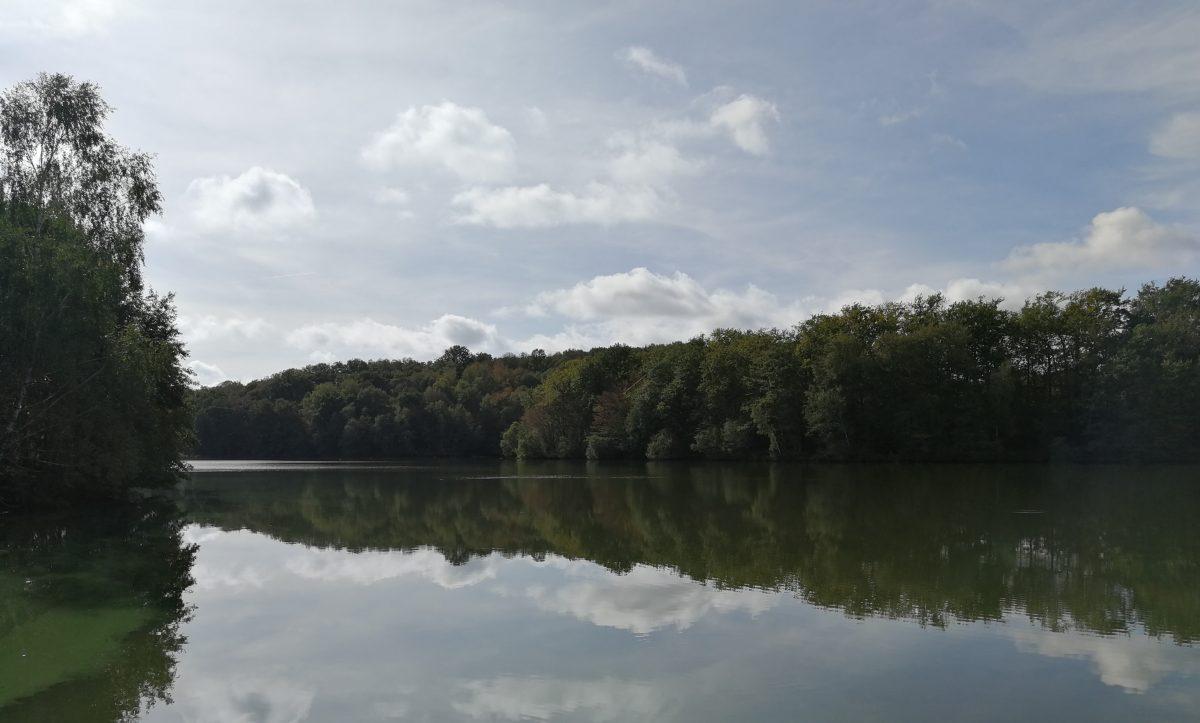 Pêche en Dordogne sur le plan d'eau de Rouffiac