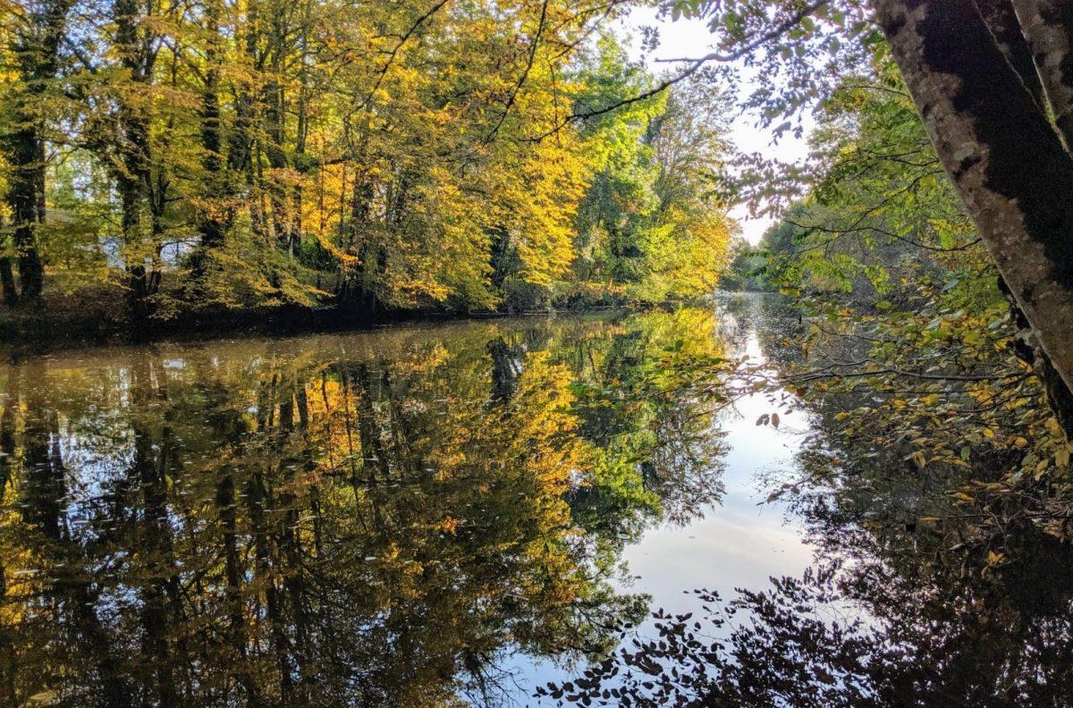 Pêche en Dordogne sur l'Auvézère
