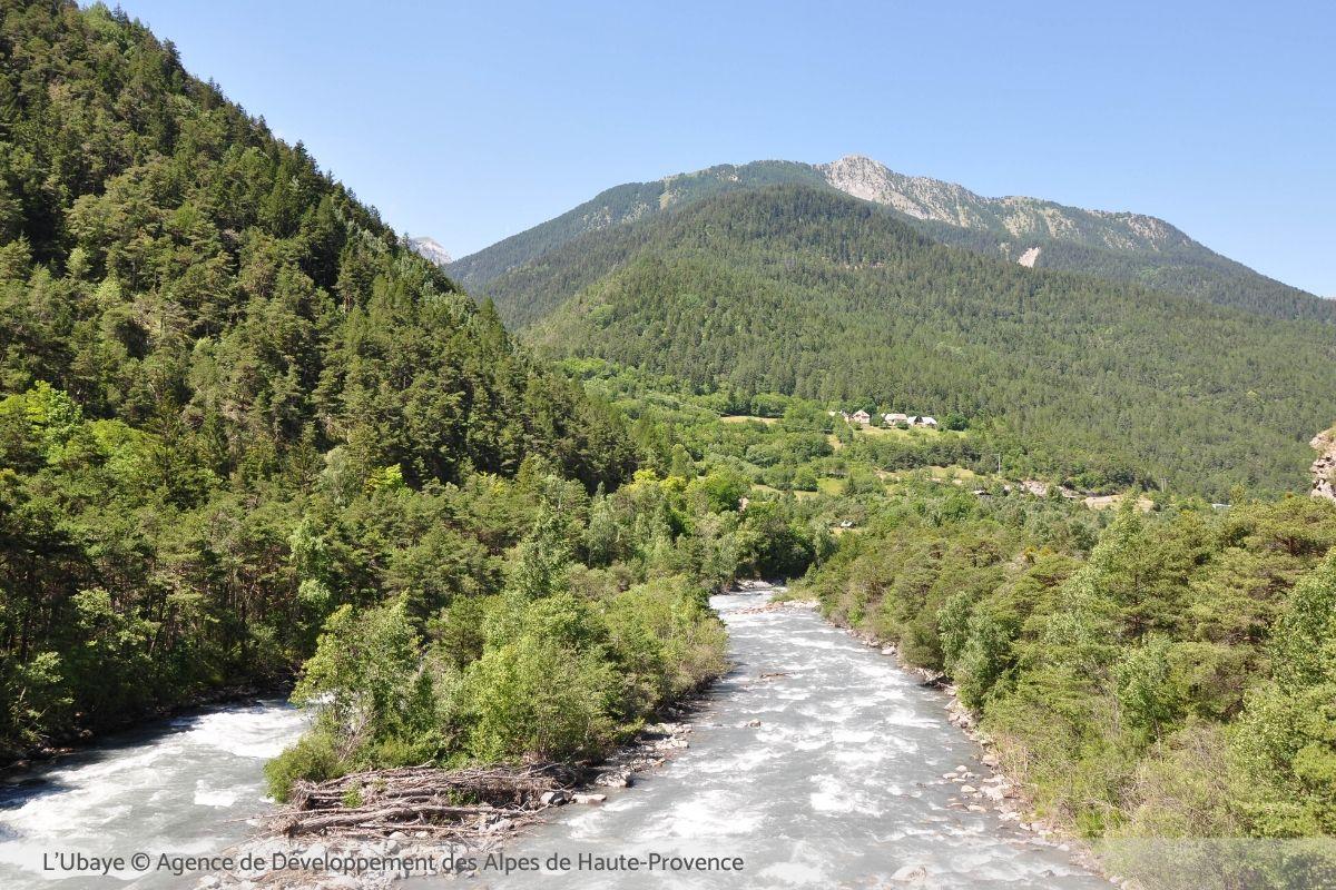 Pêche sur l'Ubaye dans les Alpes de Haute-Provence