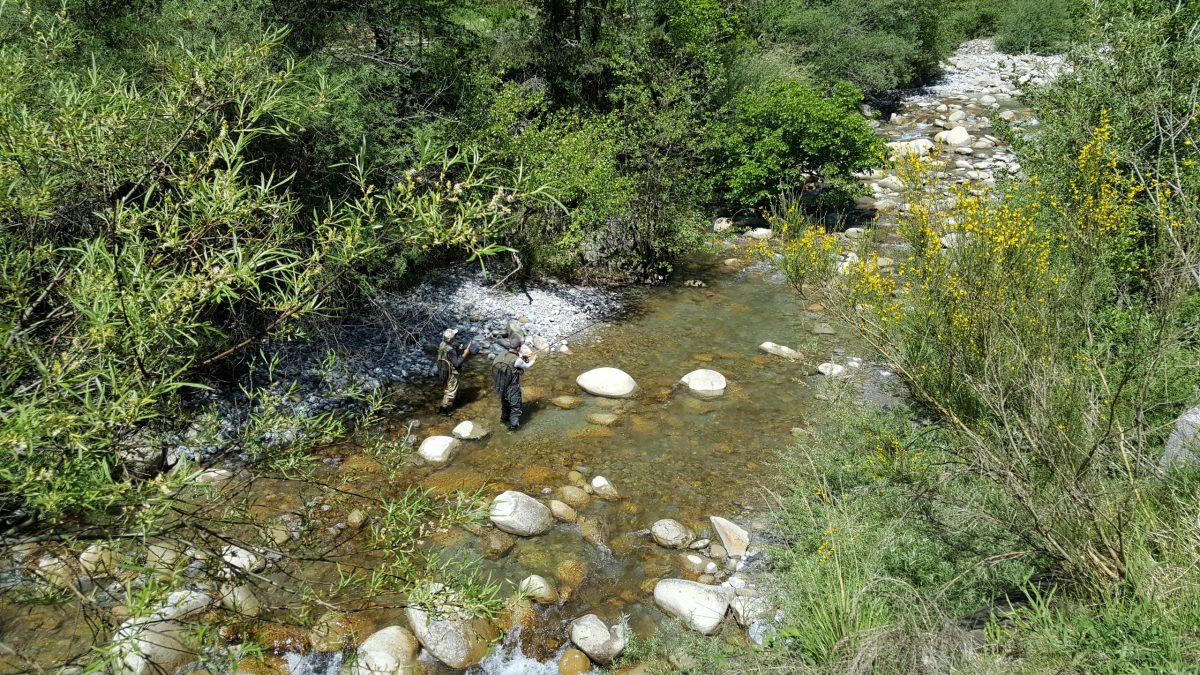 Pêche sur le Coulomp dans les Alpes de Haute-Provence
