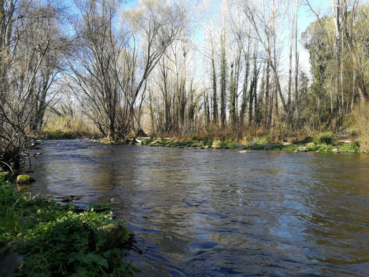 Pêche en Espagne sur le rio Ter (en Catalogne)