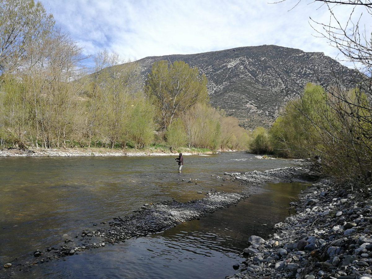 Pêche sur le Sègre en Espagne