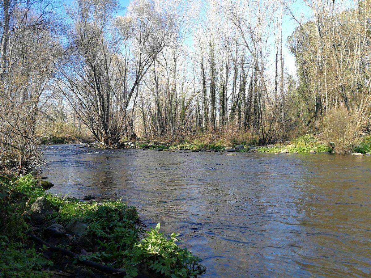 Pêche sur le rio Ter en Catalogne