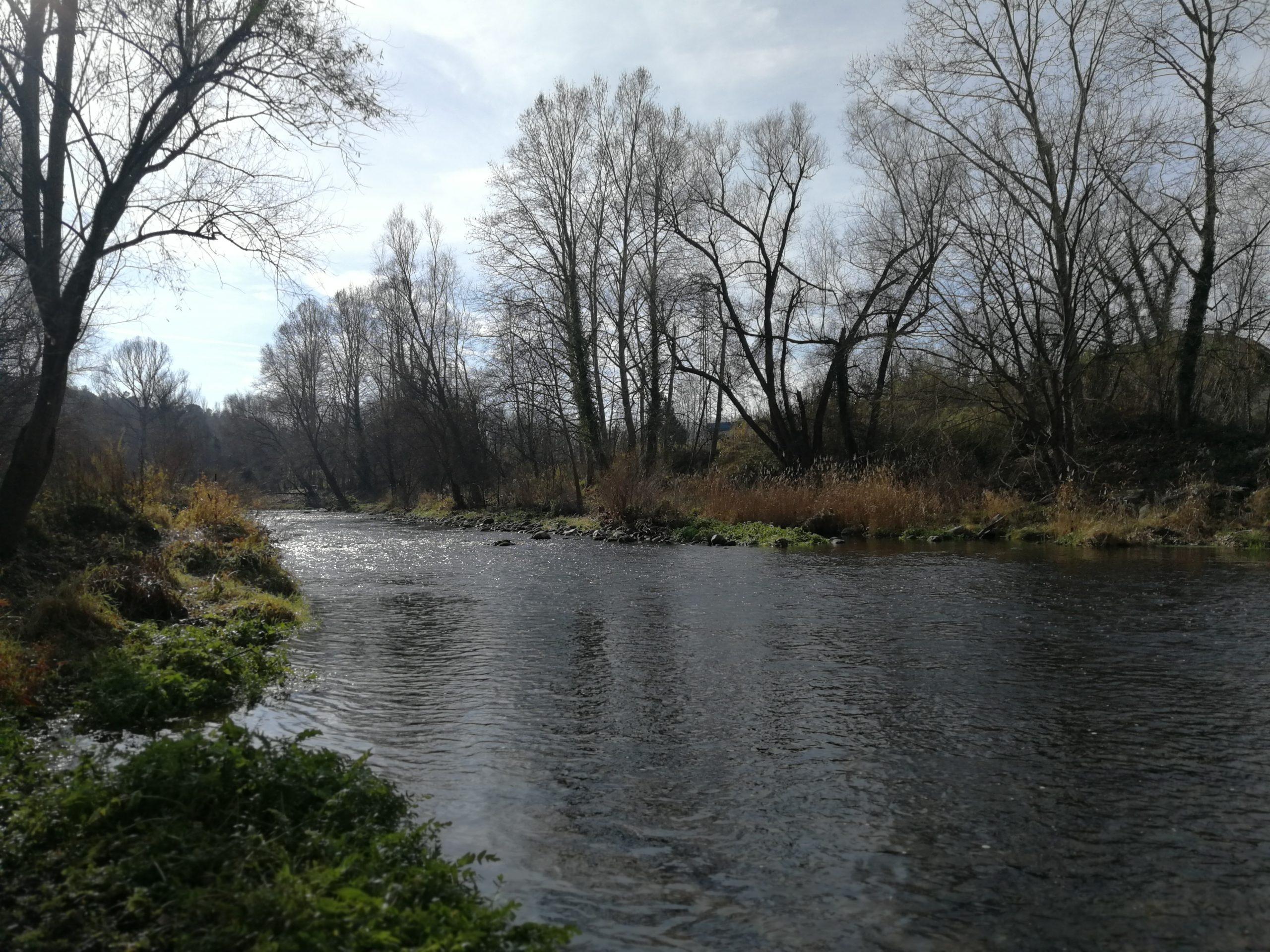 Pêche au leurre sur le rio Ter en Catalogne