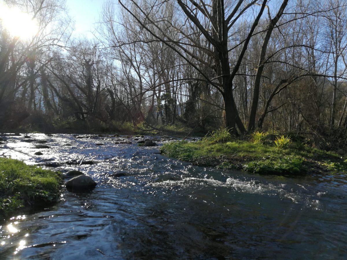 Le rio Ter en Catalogne