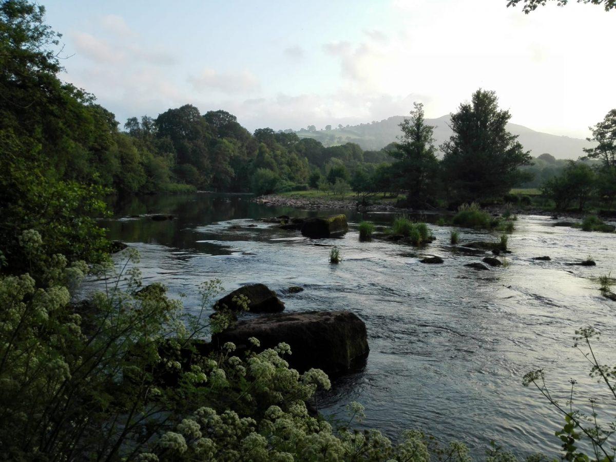 Pêche à la mouche au Pays de Galles sur les rivières Usk et Wye