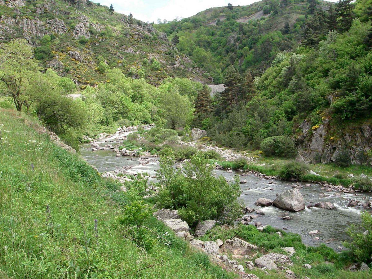 Pêcher sur l'Allier en Lozère