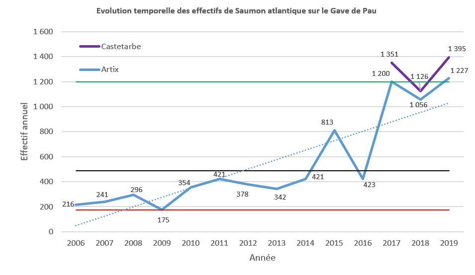 Evolution des effectifs de saumon sur le Gave de Pau